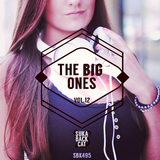 The Big Ones, Vol. 12 by Various Artists mp3 download