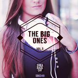 The Big Ones, Vol. 5 by Various Artists mp3 download