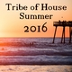 Various Artists - Tribe of House Compilation Summer 2016