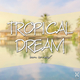 Various Artists - Tropical Dream: Born to Relax