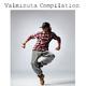 Various Artists Valminuta Compilation