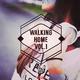 Various Artists - Walking Home, Vol. 1