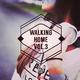 Various Artists - Walking Home, Vol. 3