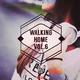 Various Artists - Walking Home, Vol. 6