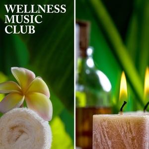 Various Artists - Wellness Music Club   (Baccara Music)