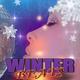 Various Artists - Winter Beats
