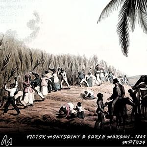 Victor Montsaint & Carlo Marani - 1865 (Metropolitan Recordings)