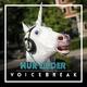 Voicebreak Nur Lieder