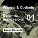 Wepsta & Codonio Dynamic Impressions