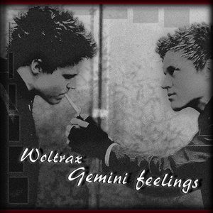 Woltrax - Gemini Feelings (T-records)