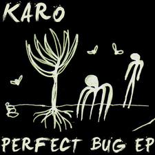 Perfect Bug EP