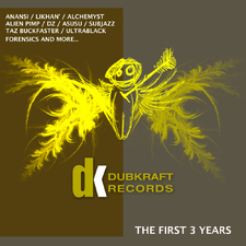 Dubkraft Records - the First 3 Years