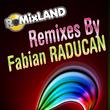 Various Artists - Remixed By Fabian Raducan