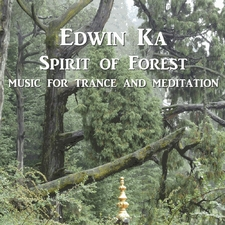 Spirit of Forest