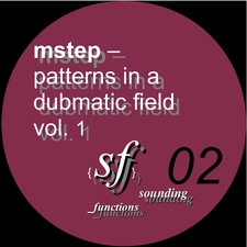 Patterns in a Dubmatic Field Vol. 1