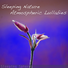 Sleeping Nature Atmospheric Lullabies