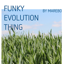 Funky Evolution Thing