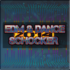 Edm and Dance Schocker 2014