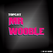 Mr Wooble