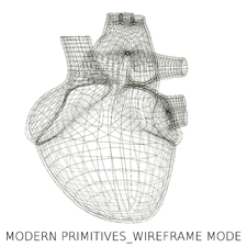 Wireframe Mode