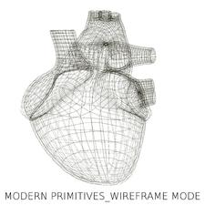 Wireframe Mode