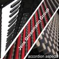 Jens Grossmann Group - Accordion Aspects