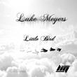 Luke Meyers - Little Bird