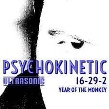 16-29-2 Year of the Monkey