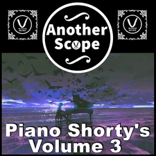 Piano Shorty's, Vol. 3