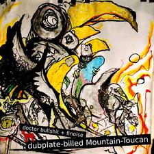 Dubplate-billed Mountain-Toucan