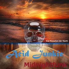 Acid Junkie