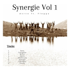 Synergie, Vol. 1