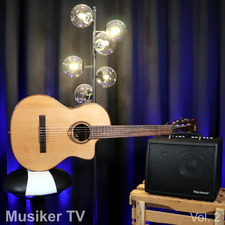 Musiker TV, Vol. 2