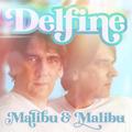 Malibu & Malibu - Delfine (Discofox Radio Edit)