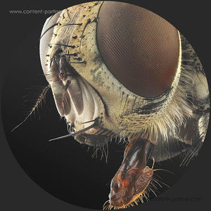 Arctor - Monachopsis EP (Vinyl Only) (Coincidence Vinyl)