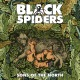 Black Spiders Sons Of The North