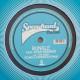 Bungle feat. Ayah Marar The Siren (Camo and Krooked Remix)