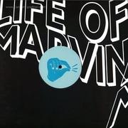 life-of-martin-vol-2-12