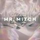 Mr.Mitch Parallel Memories