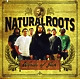 Natural Roots Words Of Jah