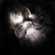 Nedry In A Dim Light