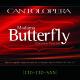 Playbacks/Cio-Cio-San M.Butterfly without Cio-Cio-San