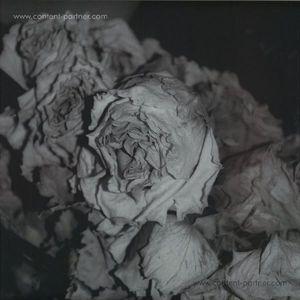 Sciahri - Quiet Witness (Black Opal)