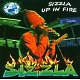 Sizzla Up The Fire