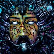 slim-vic-brain-mash-cd