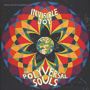 the-polyversal-souls-invisible-joy