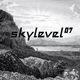 Various Artists Skylevel 07