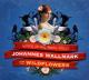 Wallmark,Johannes & The Wildflowers Living On The Same Street
