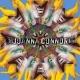 connor,joanna joanna connor band