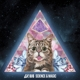 lil bub science & magic: a soundtrack to th